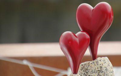 Paardenmelk, goed voor het hart en bloedvaten!