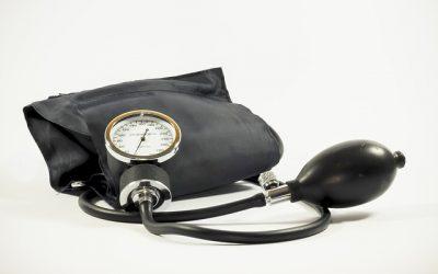 Hoge bloeddruk ga je te lijf met paardenmelk!